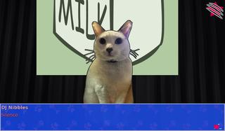 Cat President: A More Purrfect Union screenshot 3